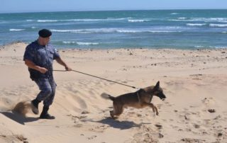 k9 unit dark water ops